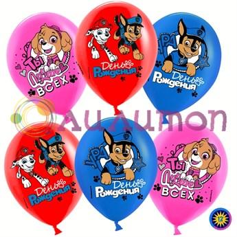 Облако из воздушных шаров 'Щенячий Патруль, С Днем Рождения!'