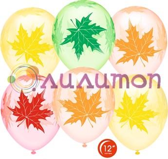 Облако из воздушных шаров 'Осенние листья'