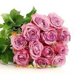 9 розовых роз - фото 4508