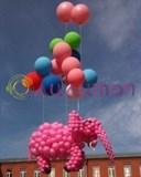Огромный розовый слон